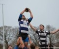 ALL IRELAND JUNIOR CUP: CI in Semi-Final Stalemate